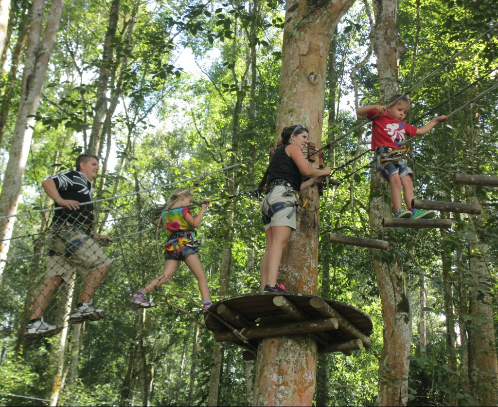 outbound bali tree top