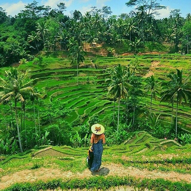 Bali nature nyepi